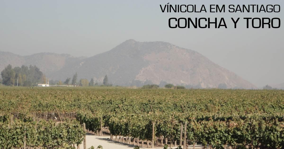 santiago - vinicola2