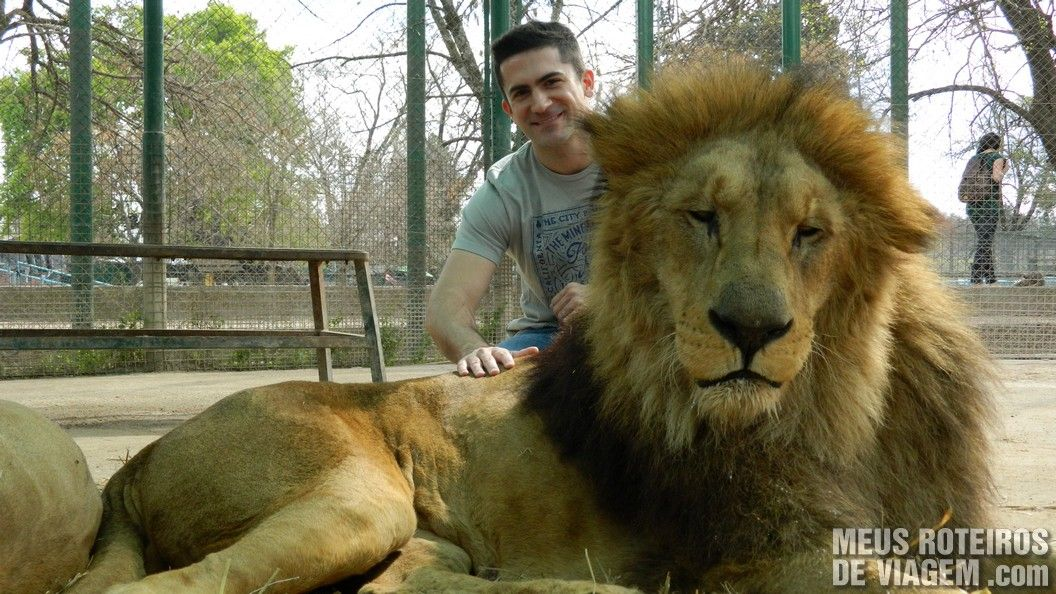 Eu e o leão no Zoo Lujan