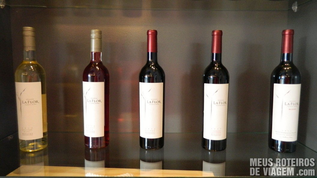 Vinhos da Bodega Pulenta Estate - Mendoza, Argentina