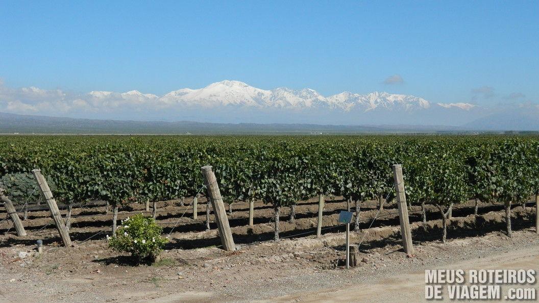 Bodega Pulenta Estate - Mendoza, Argentina