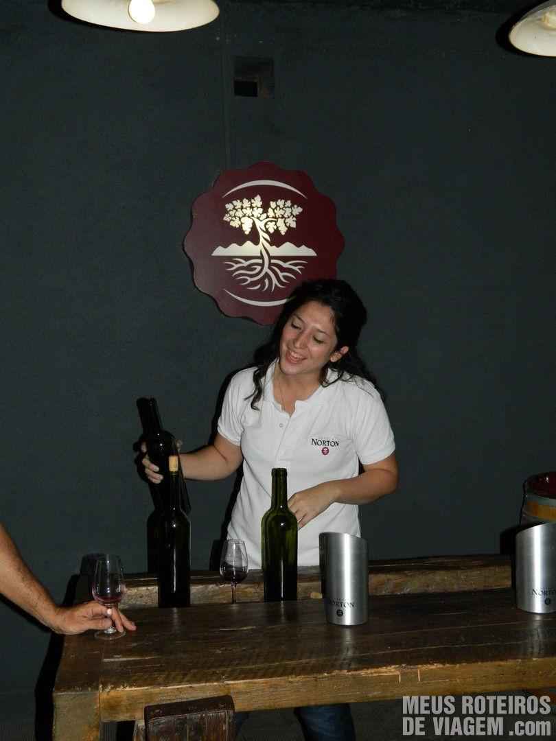 3ª degustação de Malbec - Vinho pronto na garrafa