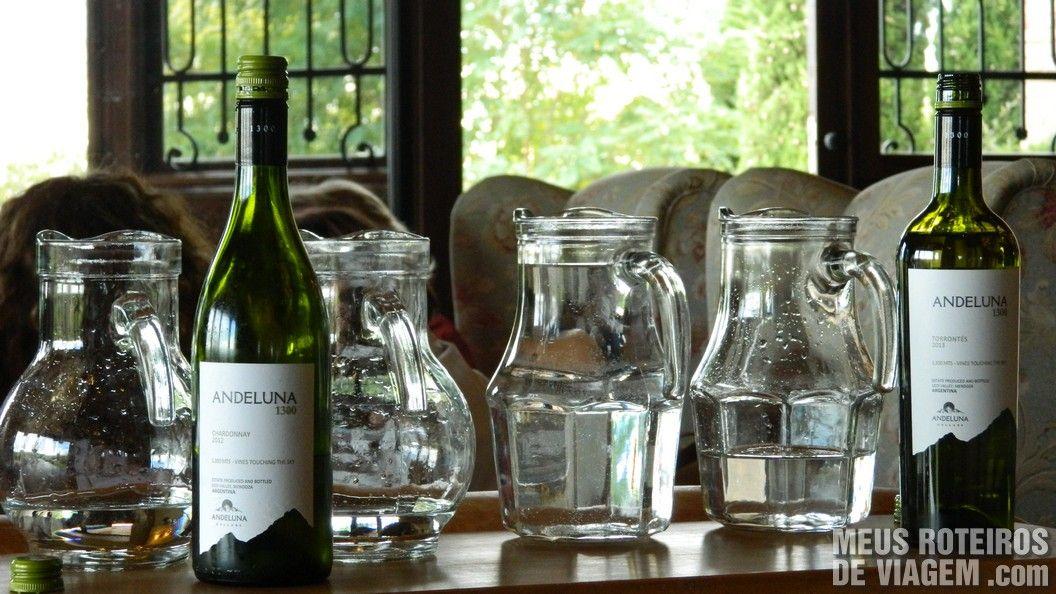 Vinhos brancos da degustação - Andeluna Mendoza