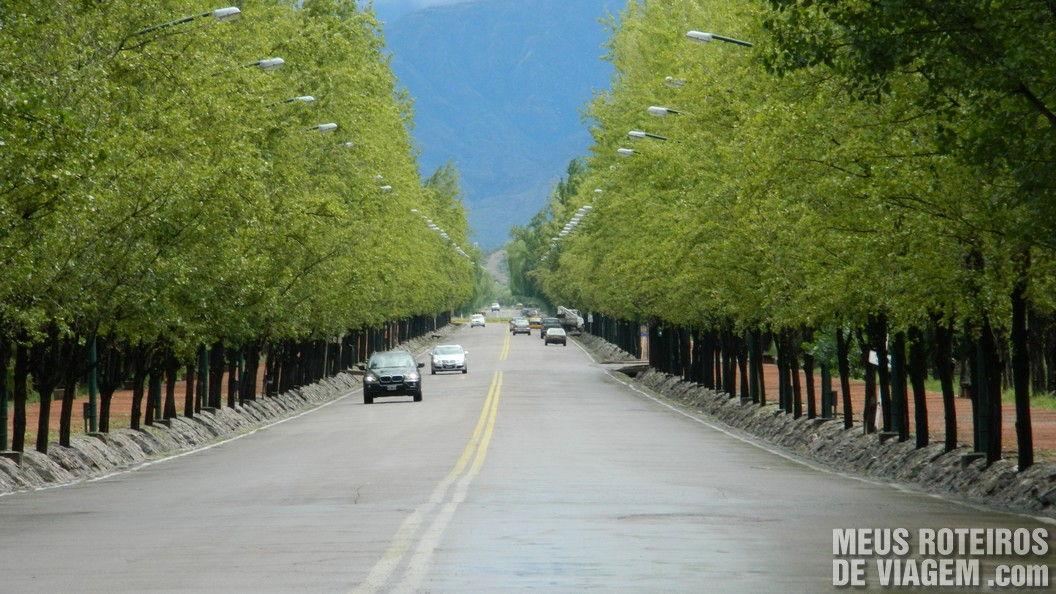 Av. del Libertador - Mendoza, Argentina