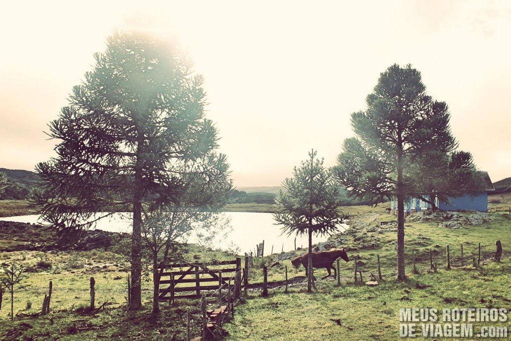 Belas paisagens e o charmoso clima de fazenda