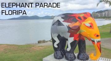 floripa - elefante