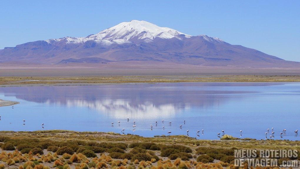 Salar de Tara - San Pedro de Atacama, Chile